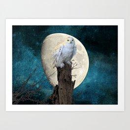 White Snowy Owl Bird Moon Blue A141 Art Print