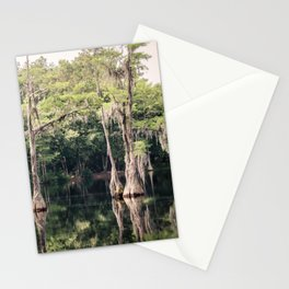Florida Beauty 9 Stationery Cards
