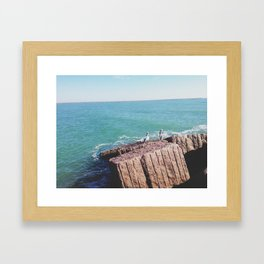 009 Framed Art Print