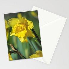 Dancing Daffodil Stationery Cards