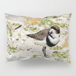 Two Ring Plover Pillow Sham