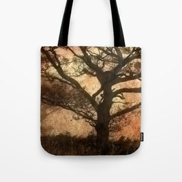 Misty Trees Tote Bag