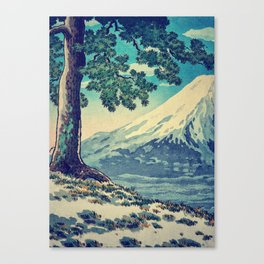 After the Snows in Sekihara Canvas Print