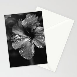 Black & White Hibiscus Stationery Cards