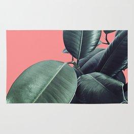 Ficus Elastica Summer Vibes #1 #coral #foliage #decor #art #society6 Rug