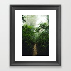 Pictured Rocks Pathway Framed Art Print