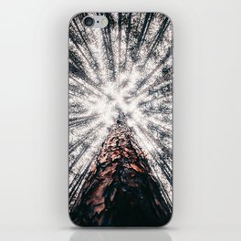 Carry On My Wayward Heart iPhone Skin