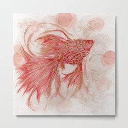 peach goldfish Metal Print
