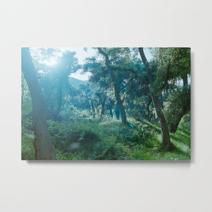 Green Forest I Metal Print