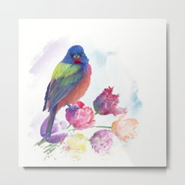 Male Painted Bunting with tulips, watercolor painting Metal Print