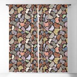 Moths Pattern - Dark Brown Blackout Curtain