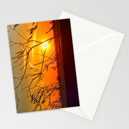Sunset through the bushes Stationery Cards