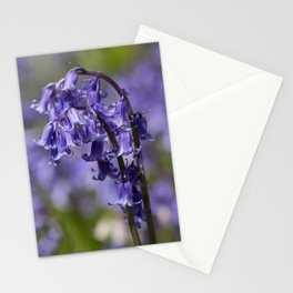 In Among the Bluebells Stationery Cards