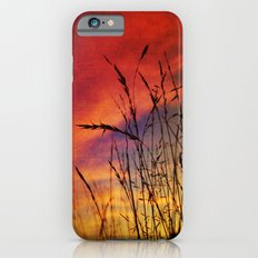 Dreaming in Color (of the Setting Sun) Slim Case iPhone 6s