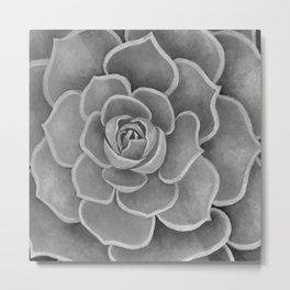 Grey Succulent Metal Print