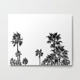 PALM TREES BLACK Metal Print