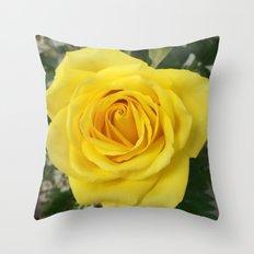 Friendship Rose Throw Pillow