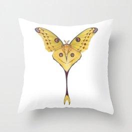 Comet moth (Argema mittrei) Throw Pillow