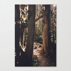 Forest Wonderland Canvas Print