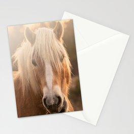 Horses v2 Stationery Cards