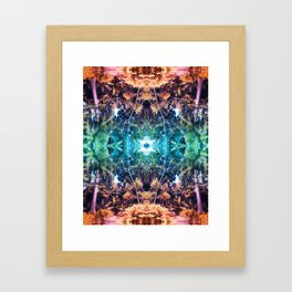 Eurphoria Framed Art Print