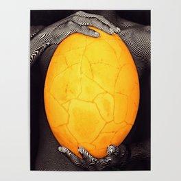 Elephant Bird Egg Madagascar Poster