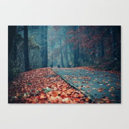 Vanish Into Small Canvas Print
