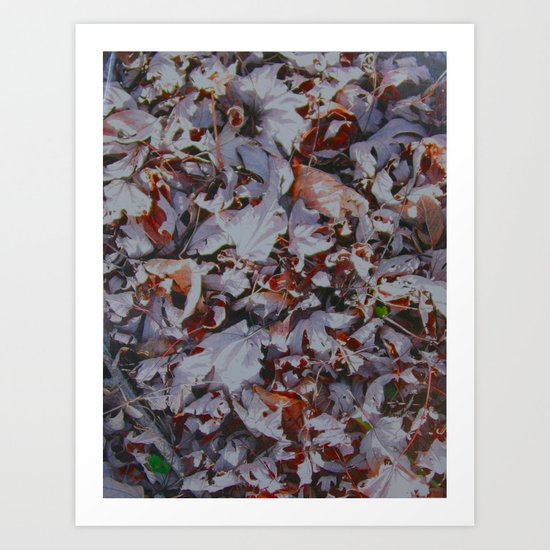 Leaves Texture Photography Art Print