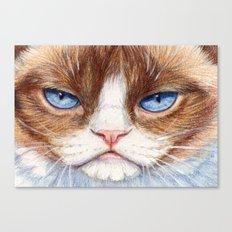 Grumpy kitty 866 Canvas Print