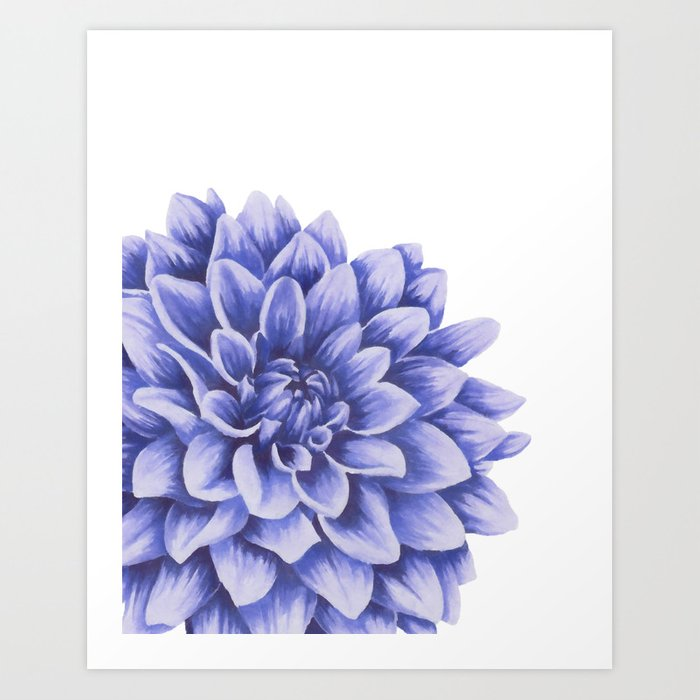 Chrysanthemum Meaning And Symbolism Ftd Com