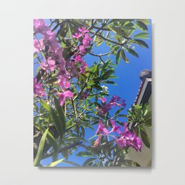 Bali Orchids Metal Print