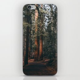 Walking Sequoia iPhone Skin