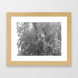 Lightning Crashes Framed Art Print