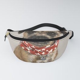 Starry Eyed Fanny Pack
