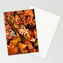 Autumn Leaves and Fall Berries Stationery Cards