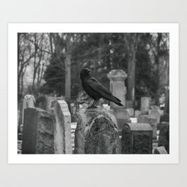 Crow In Shades Of Stone Art Print