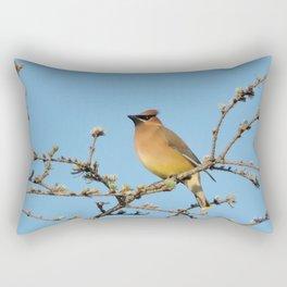 Cedar Waxwing Faces Sunset Rectangular Pillow