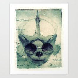 X Ray Terrestrial No. 5 Art Print