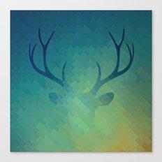DH1 Canvas Print