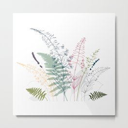 Fireweed, fern leaves, lavender and wild grass illustration Metal Print