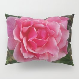Rose Divine Pillow Sham