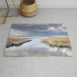 the way for major storms Rug