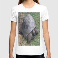 tortoise T-shirts featuring tortoise by shannon's art space