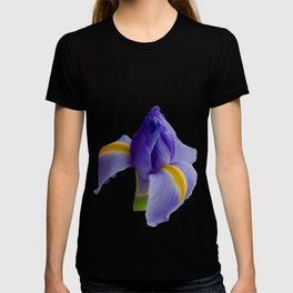 Blue and Yellow Iris T-shirt