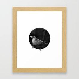 Polka Perch Solo Framed Art Print