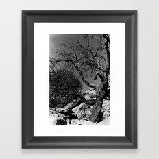 Desolance Framed Art Print