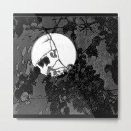 Moonshadows in the Garden Metal Print