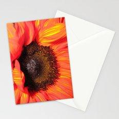 Blaze of Color Stationery Cards
