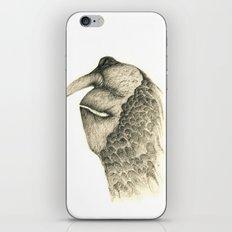 Plumy iPhone & iPod Skin