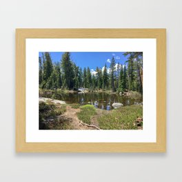 Desolate Pond Framed Art Print